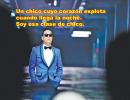 Gangnam Style (Sub-Español)