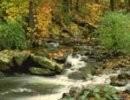 Cascadas maravillosas