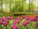 Jardín de Europa-Holanda