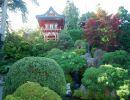 Jardín de Té Japonés de San Francisco