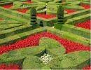 Jardines de Villadry – Francia