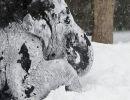 Los elefantes jugando en la nieve en el zoo de Berlín