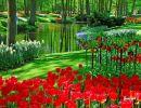 Bellezas de Holanda