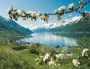 Viajando por Noruega 2