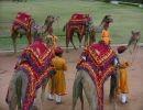 Tesoros de la India Rajastán 2