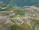 Longsheng terrazas de arroz en China
