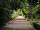 Un recorrido por el Jardín Botánico de Valencia