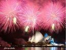 Viajando por Australia